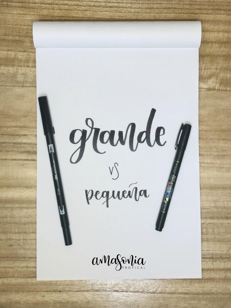 PUNTA GRANDE VS PEQUEÑA