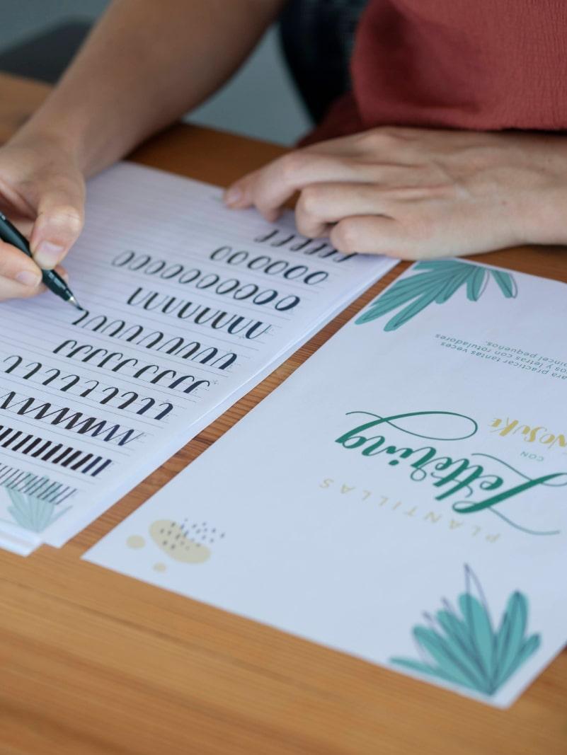 Plantillas de Lettering Amasonia Tropical