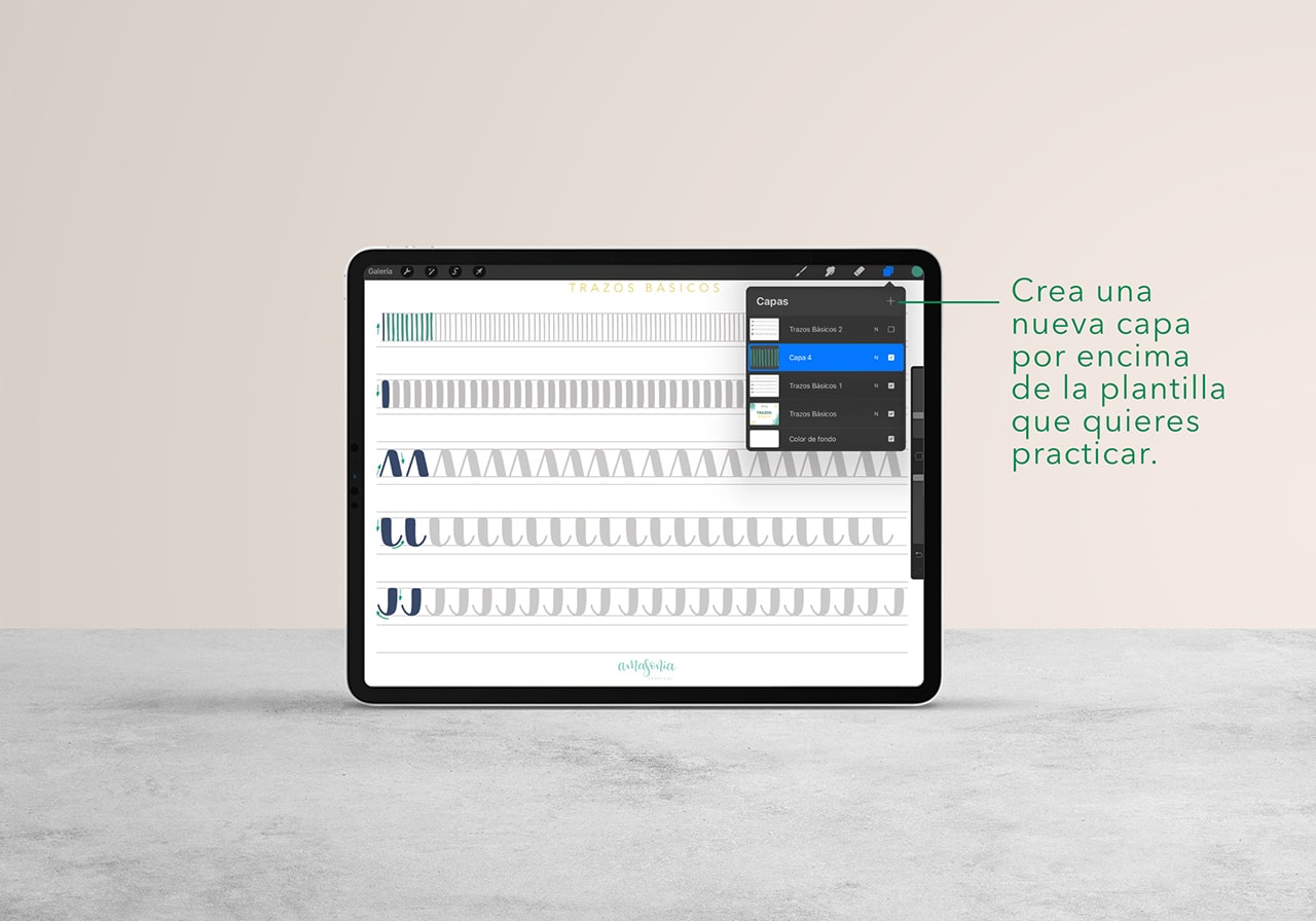 Trazos básicos ipad procreate